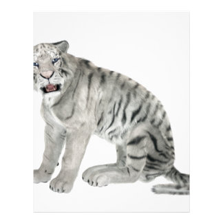 White Tiger Looking to the Front Letterhead