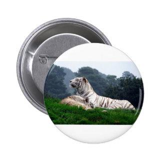 White Tiger Mamma and Cub Button