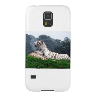 White Tiger Mamma and Cub Galaxy S5 Case