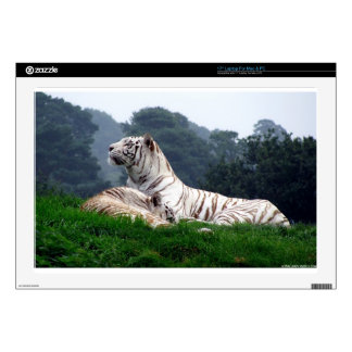 White Tiger Mamma and Cub Laptop Decals