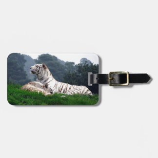 White Tiger Mamma and Cub Luggage Tag