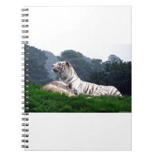 White Tiger Mamma and Cub Notebook