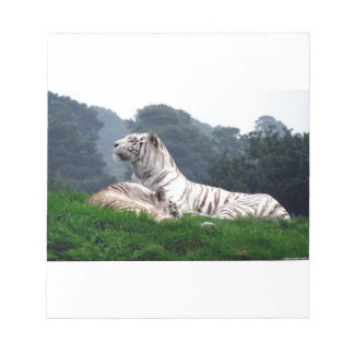 White Tiger Mamma and Cub Notepad