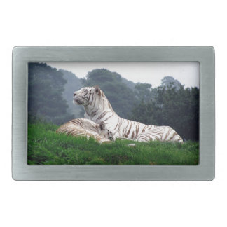 White Tiger Mamma and Cub Rectangular Belt Buckle