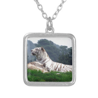 White Tiger Mamma and Cub Silver Plated Necklace