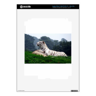 White Tiger Mamma and Cub Skins For iPad 3