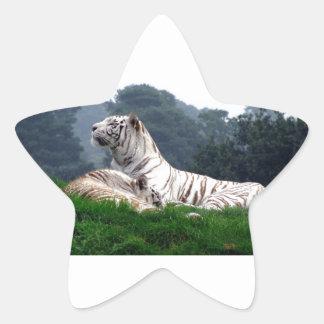 White Tiger Mamma and Cub Star Sticker