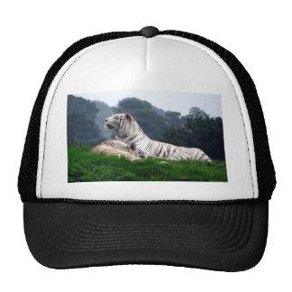 White Tiger Mamma and Cub Trucker Hat