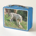 "White Tiger Metal Lunch Box<br><div class=""desc"">A white tiger decorates this handy metal lunch box  animal wildlife nature</div>"
