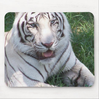 White tiger on green grass vertical frame picture mousepad
