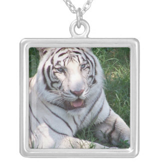 White tiger on green grass vertical frame picture square pendant necklace