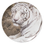 White Tiger Party Plates