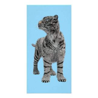 White Tiger Photo Card