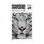 White Tiger Postage Stamps