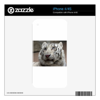 White Tiger Skin For iPhone 4