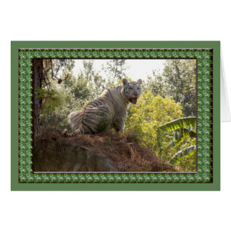 white-tiger-st-patricks-0065 tarjeta de felicitación