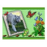 white-tiger-st-patricks-0083 postal