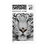 White Tiger Stamp