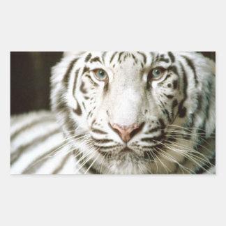 White Tiger Rectangular Stickers