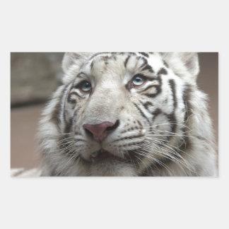 White Tiger Rectangular Sticker