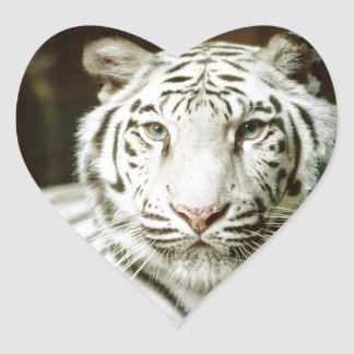 White Tiger Heart Stickers