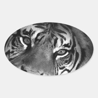 white-tiger sticker