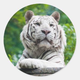 White Tiger stickers