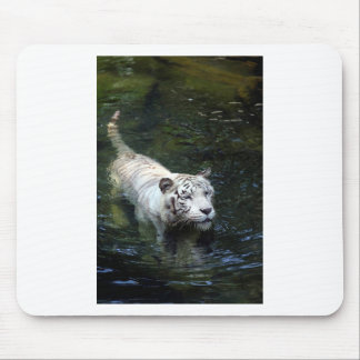 White tiger swimming in river mouse pad
