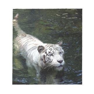 White tiger swimming in river memo notepad