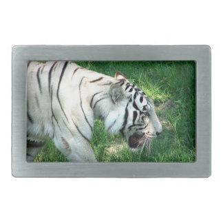 White Tiger walking by Susan L Marsh Rectangular Belt Buckle