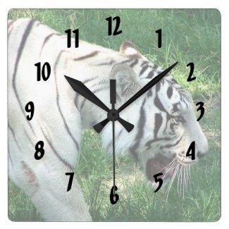 White Tiger walking by Susan L Marsh Clocks
