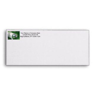 White Tiger walking by Susan L Marsh Envelope
