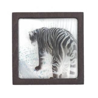 White Tiger wild animal Gift Box