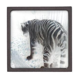 White Tiger wild animal Keepsake Box