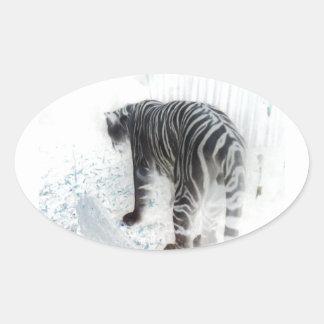 White Tiger wild animal Oval Sticker