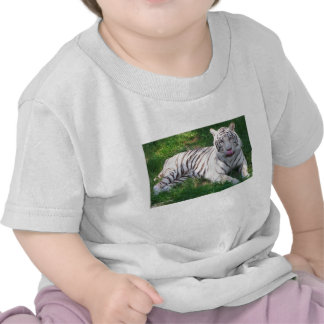 White Tiger with Blue Eyes Licking Nose Tee Shirts