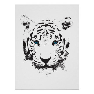 White Tiger with Blue Eyes Poster