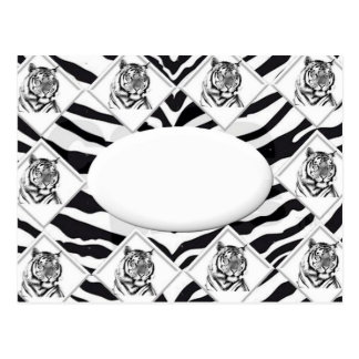 White Tiger with Checkerboard Bacground Postcard