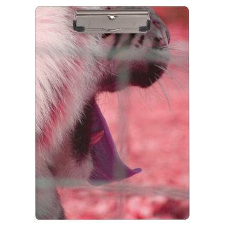 white tiger yawn pink side animal image clipboard