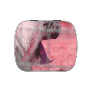 white tiger yawn pink side animal image jelly belly tins