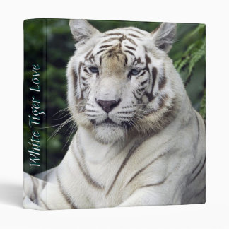 White Tigers 1 Binders