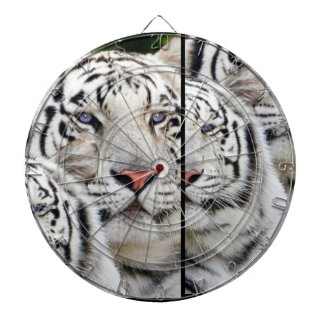 white tigers blue eyes dartboard with darts