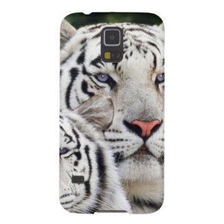 white tigers blue eyes galaxy s5 cover