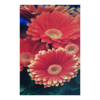 White Tipped Flowers Poster