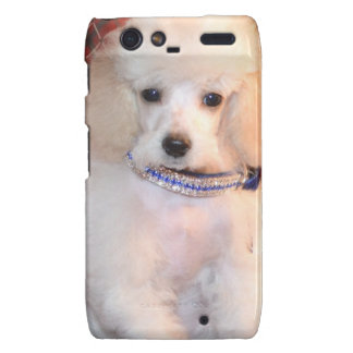 White Toy Poodle Fluffy Puppy Droid RAZR Case