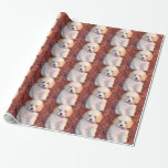 White Toy Poodle Fluffy Puppy Gift Wrap