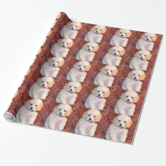 White Toy Poodle Fluffy Puppy Wrapping Paper