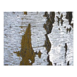 White Tree Bark Scrapbooking Paper