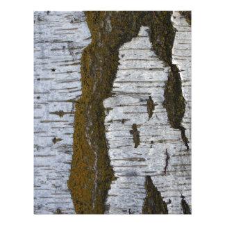 White Tree Bark Scrapbooking Paper 8.5x11