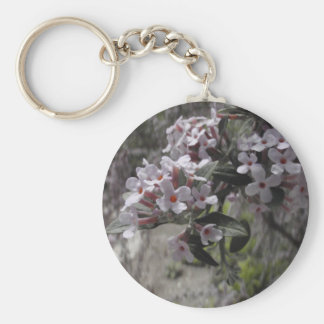White Tree Blossom With A Hint Of Pink Key Chains
